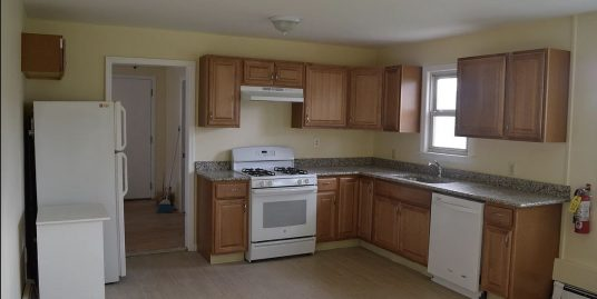 Fully Renovated 6 bedroom house